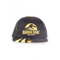 Jurassic Park Ripped Snap Back