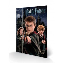 Harry Potter Harry, Ron &...