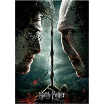 Harry Potter VS Voldermort...