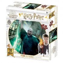 Harry Potter Voldermort...