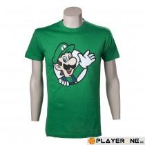 Nintendo  Green Luigi...