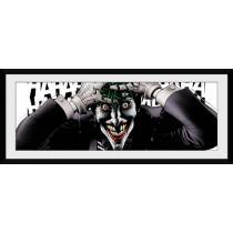 DC Comic Laughing Joker...