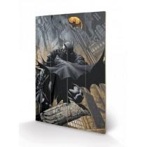 DC Comics Batman Night...
