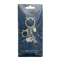 Harry Potter Charm Keychain