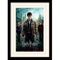 Harry Potter Deadthly...