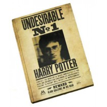 Harry Potter Undesirable No.1 Notebook